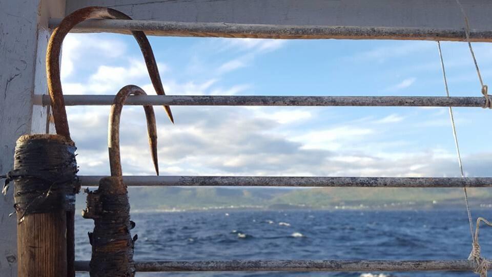 Gros plan sur deux crochets accrochés au garde-corps d'une embarcation, avec, en arrière-plan, le Saint-Laurent.