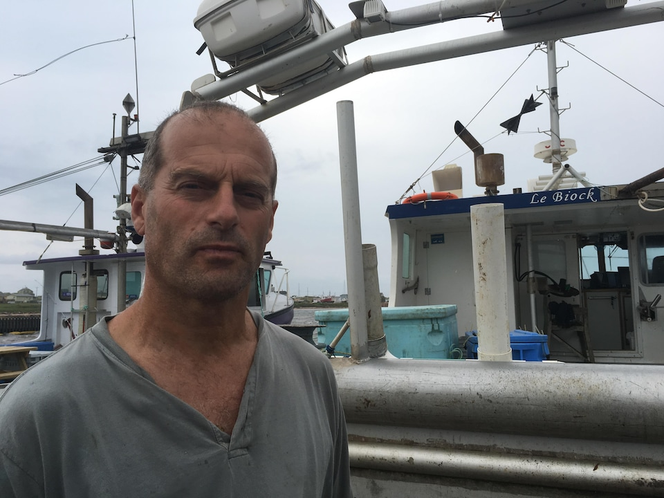 Ghislain Cyr milite depuis des années pour que les gouvernements aident la communauté maritime à contrôler le troupeau de phoque gris. Il craint pour les stocks de poisson. Les phoques gris mangent trop de poisson, selon lui.
