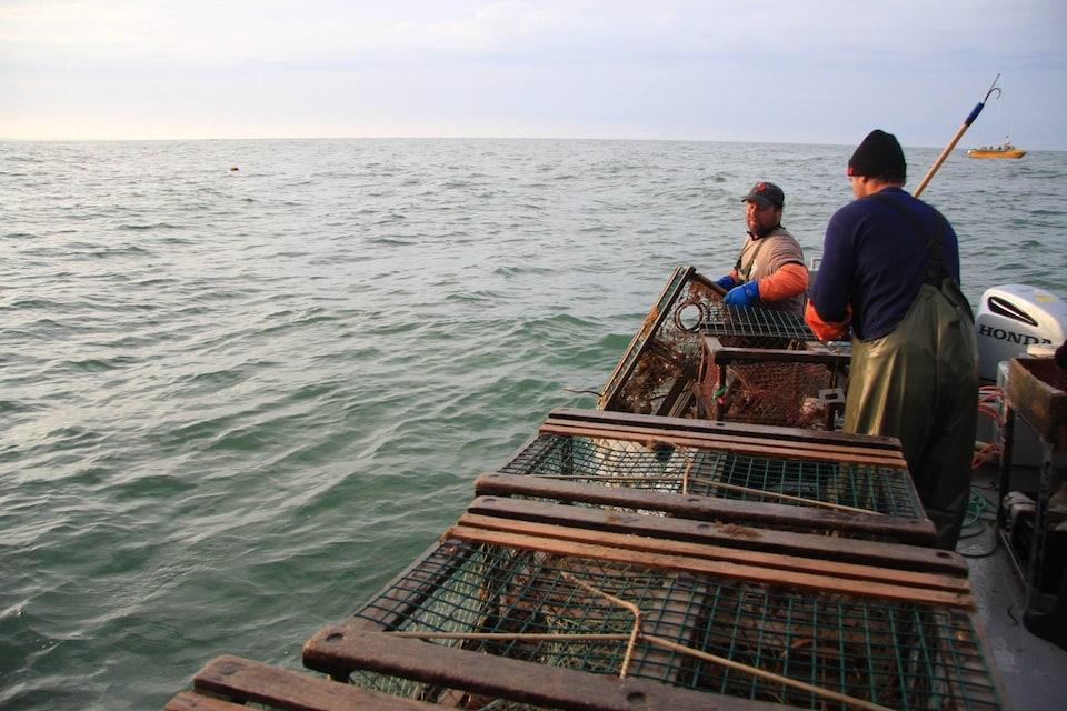 On voit de côté deux pêcheurs qui remontent des cages à homard sur leur bateau.