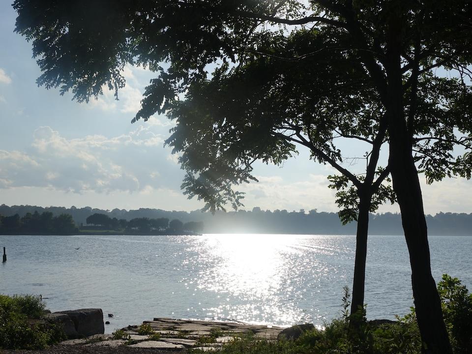 On voit à contre-jour le soleil qui se reflète sur le lac Ontario. Au premier plan, un arbre et le quai de pierres.