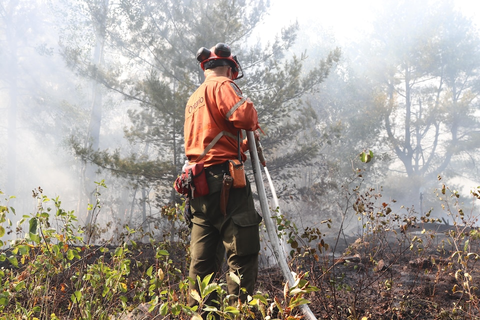 Un pompier dans une forêt.