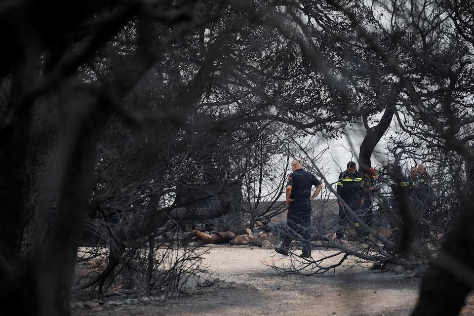 Des pompiers ont combattu un feu dans le village de Mati, en Grèce, le 24 juillet 2018.