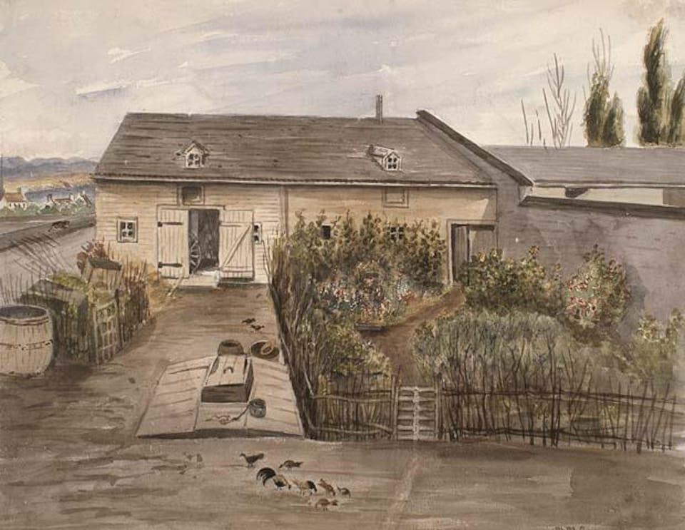 Un potager est placé devant une maison. On y retrouve plusieurs fines herbes et légumes servant à nourrir la famille.