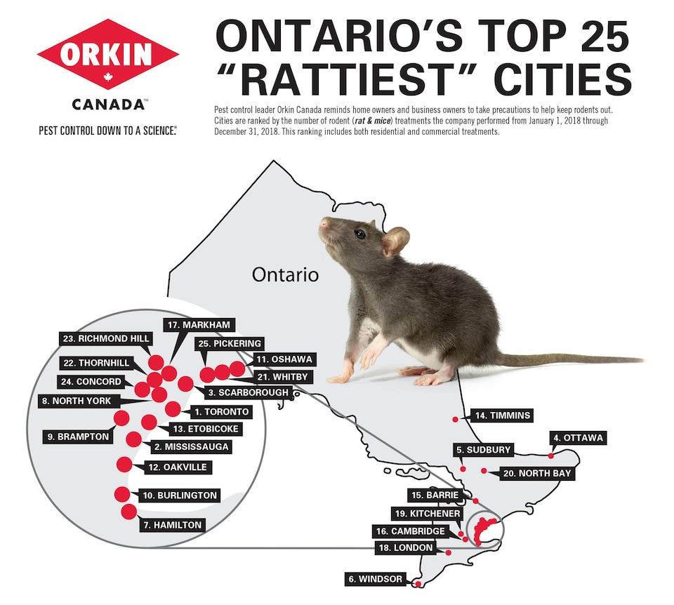 Une carte de l'Ontario indique les villes qui ont le plus de rongeurs.