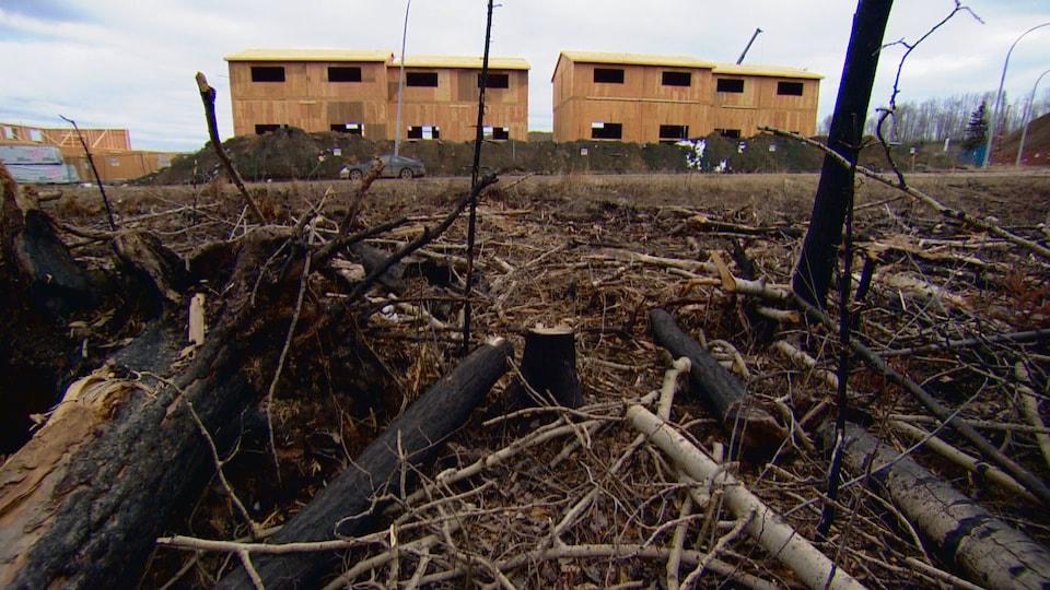 Un an après l'incendie, la reconstruction fait le nouveau boom de Fort McMurray.