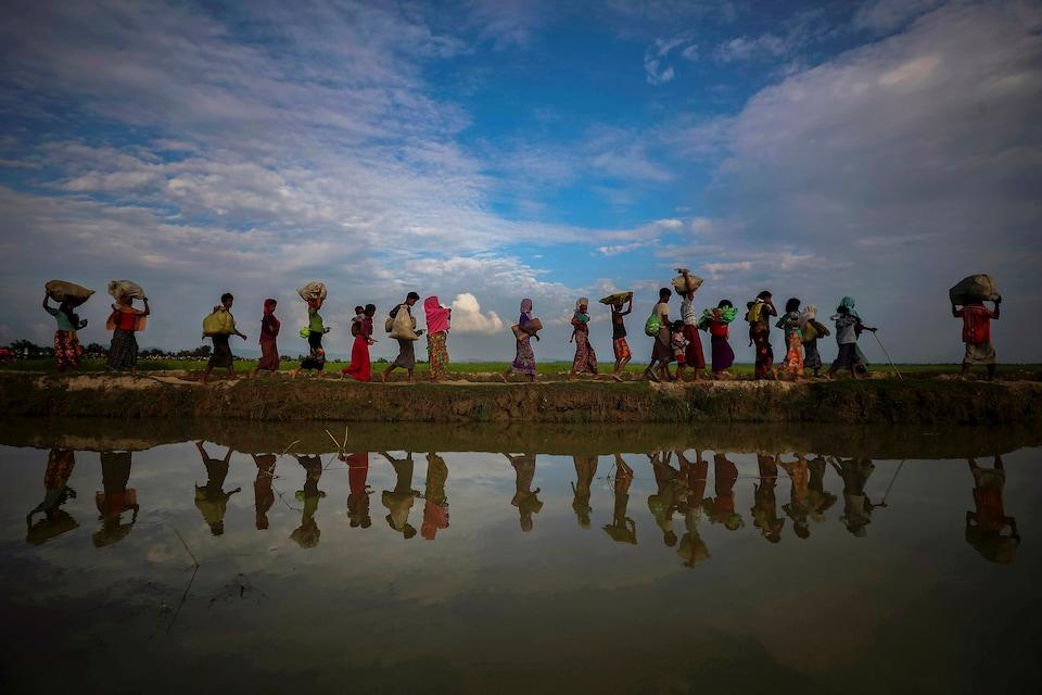 Des réfugiés rohingyas près des rizières après avoir fui le Myanmar pour aller vers Palang Khali, près de Cox's Bazar, au Bangladesh.