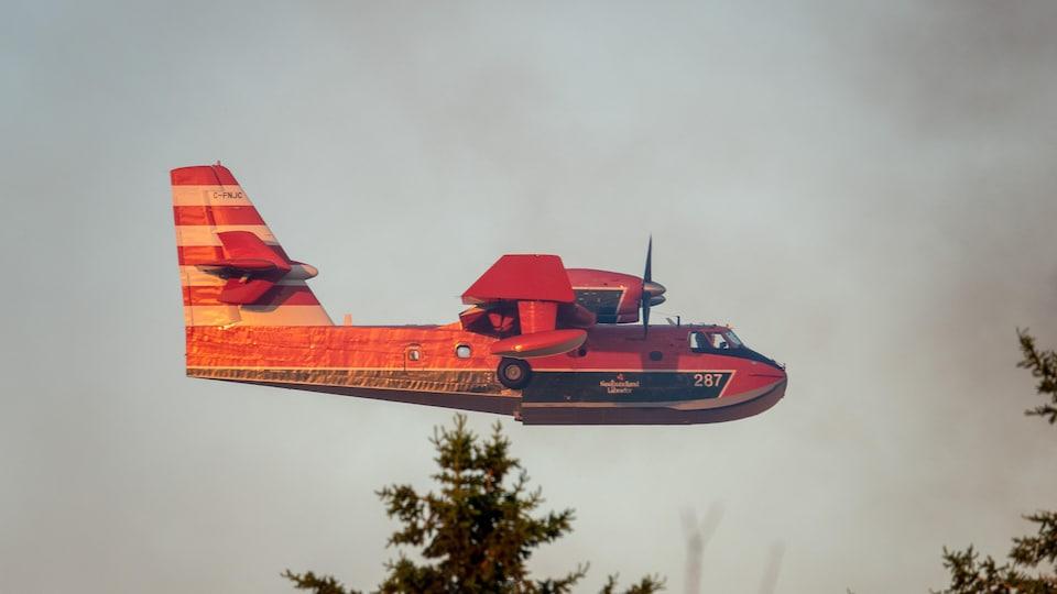 L'avion passe juste au-dessus des arbres.