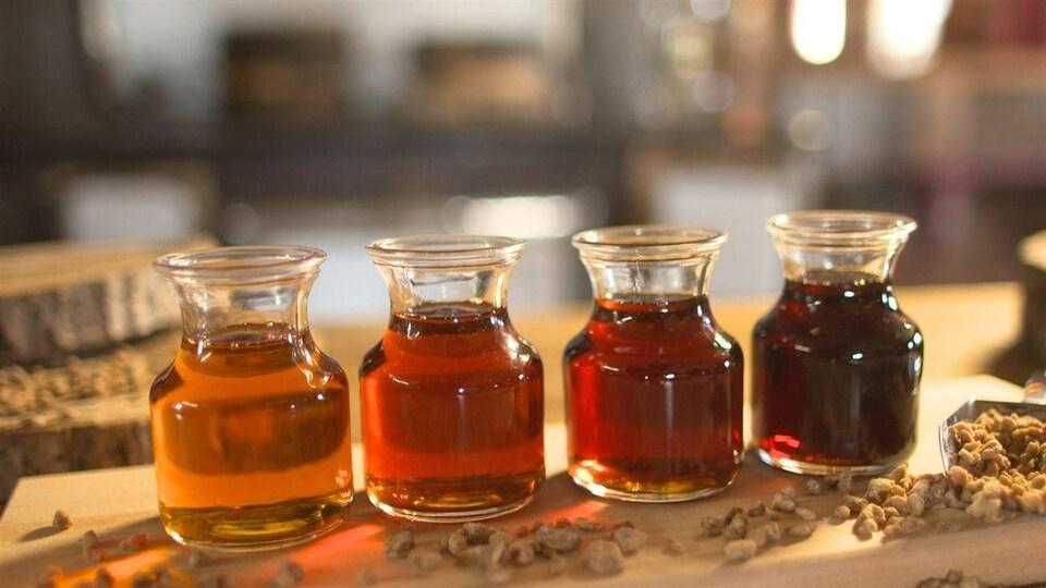 Quatre petites bouteilles de sirop d'érable, de la plus claire à la plus foncée.