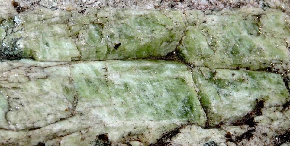 Gros plan sur des cristaux de spodumène dans de la roche de pegmatite blanche.
