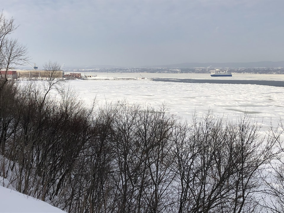 Vu de loin, le navire avance sur l'eau glacée.