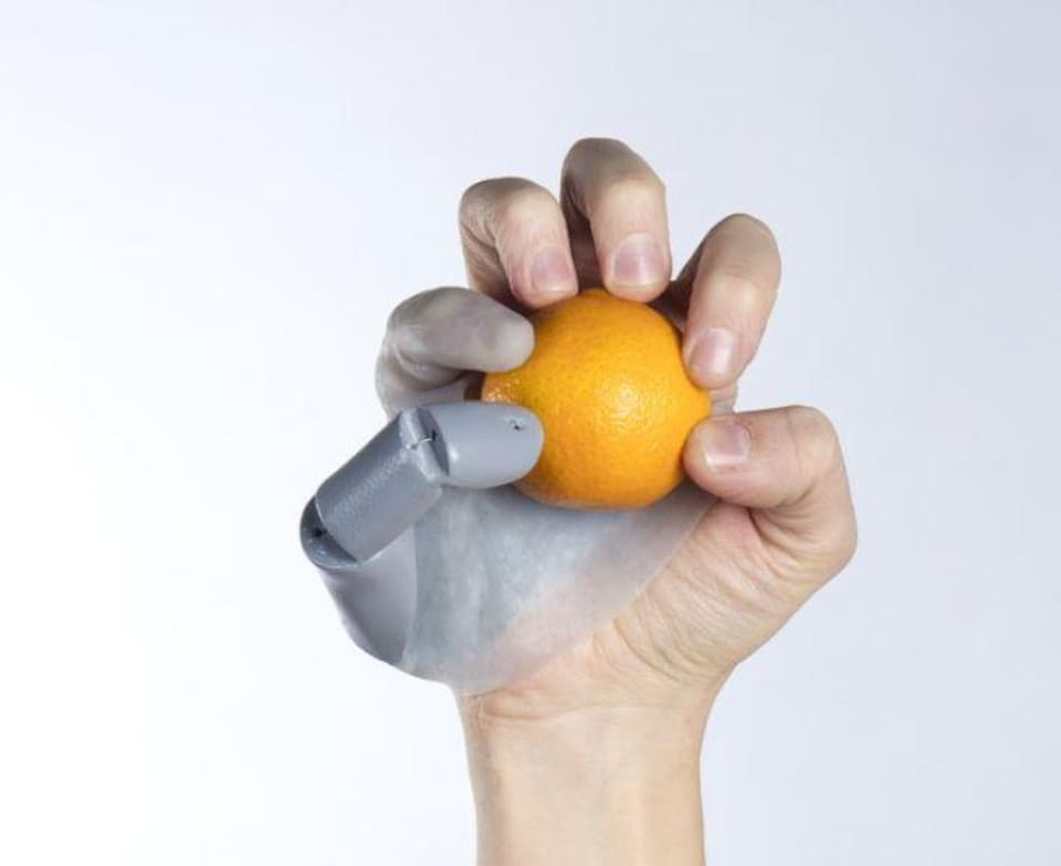 Une main tenant une orange à l'aide du troisième pouce.