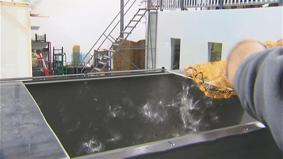 Usine de transformation du soyer du Québec de la compagnie Les Industries Encore 3 à Granby