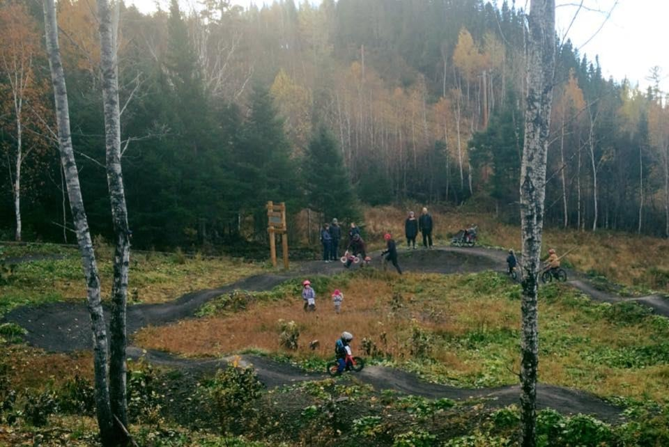 Des enfants s'initient au vélo de montagne sur un petit sentier de terre.
