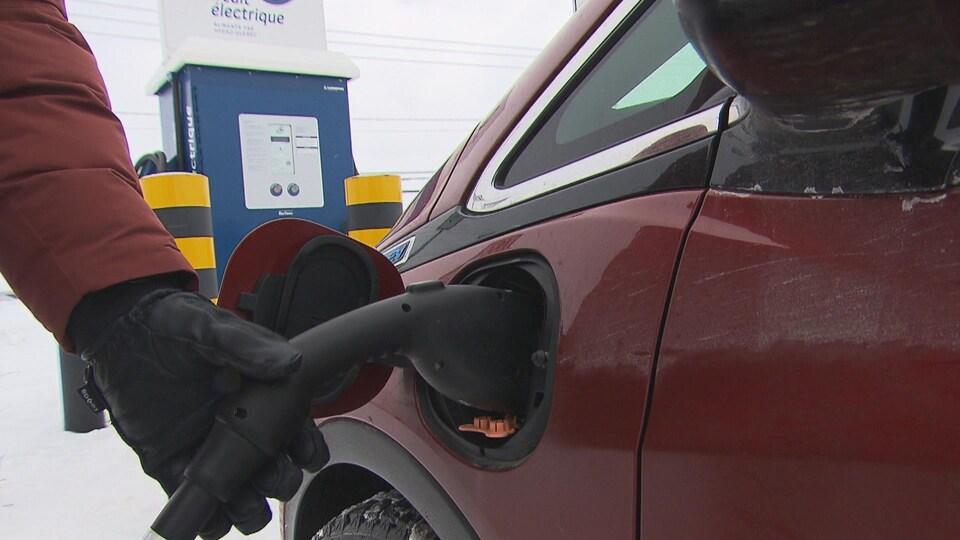 Une main installe une fiche de recharge pour une voiture électrique.