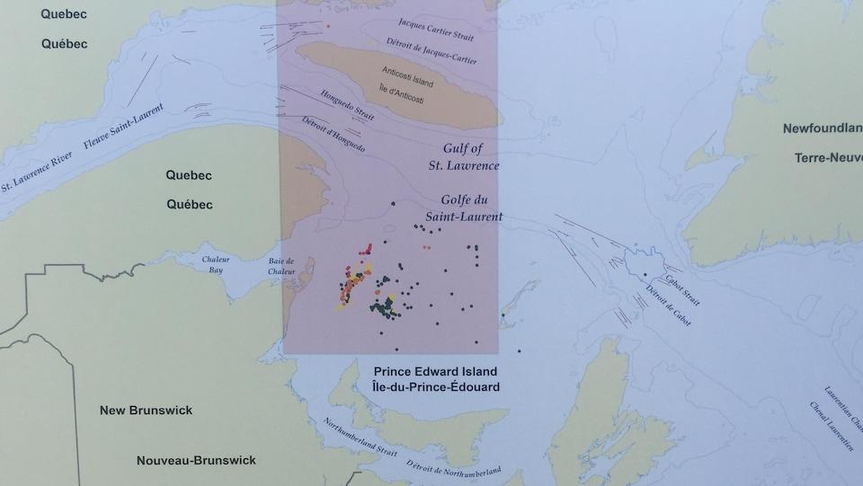 La zone temporaire de limitation de vitesse obligatoire dans le golfe du Saint-Laurent