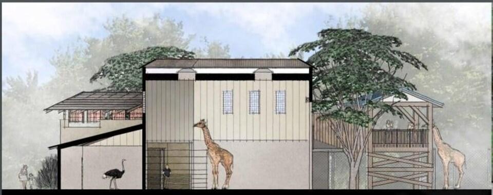Schéma de l'aménagement avec un enclos pour les girafes.