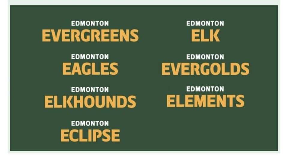 Liste des sept noms retenus, Evergreens, Eagles, Elkhounds, Eclipse, Elk, Evergolds et Elements.