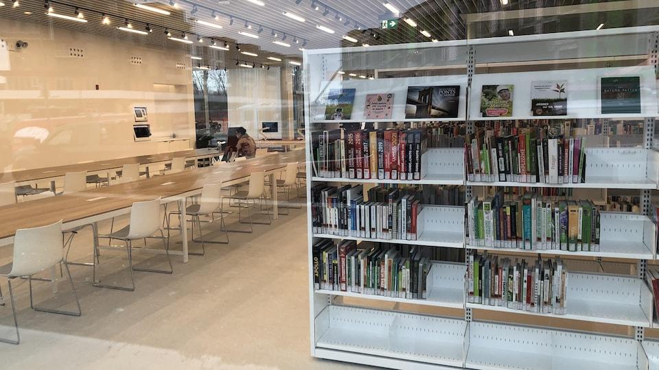 Des livres sur des étagère et une longue tables avec une rangée de chaises.
