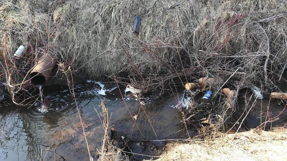 Des déchets dans un ruisseau aux abords d'un champ.