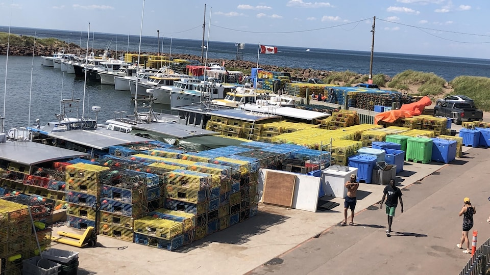 Des gens circulent sur un quai où sont empilés des dizaines de casiers à homard.