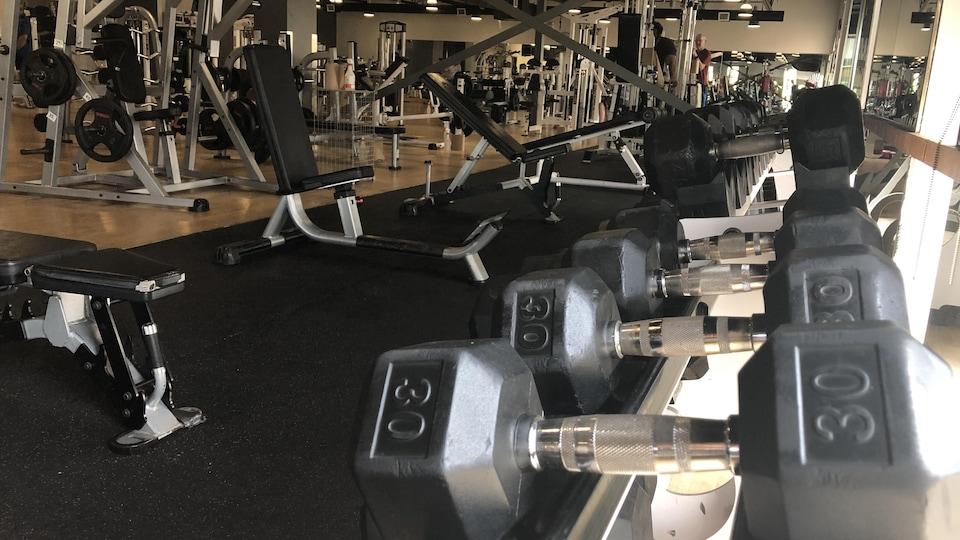 Poids d'entraînement et d'autres équipements en arrière plan.