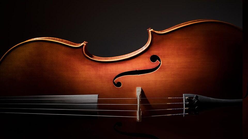 Gros plan sur un instrument à corde (violon ou violoncelle)