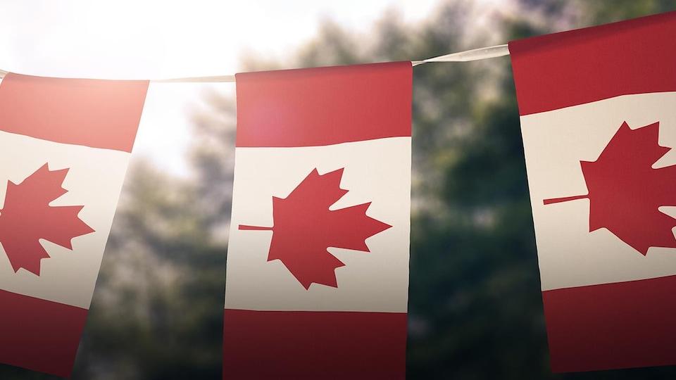 Des drapeaux du Canada suspendus sur une corde.