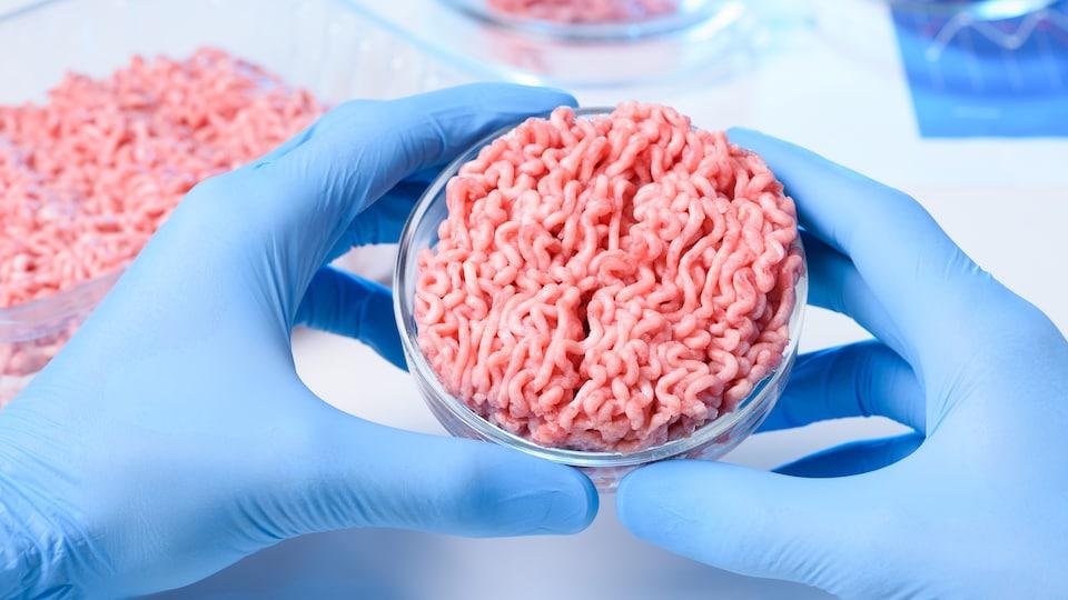 Des mains dans des gants de plastique tiennent, dans ce qui semble être un laboratoire, un contenant rond avec de la viande artificielle hachée.