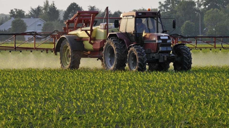 Un tracteur épand des pesticides dans un champ.
