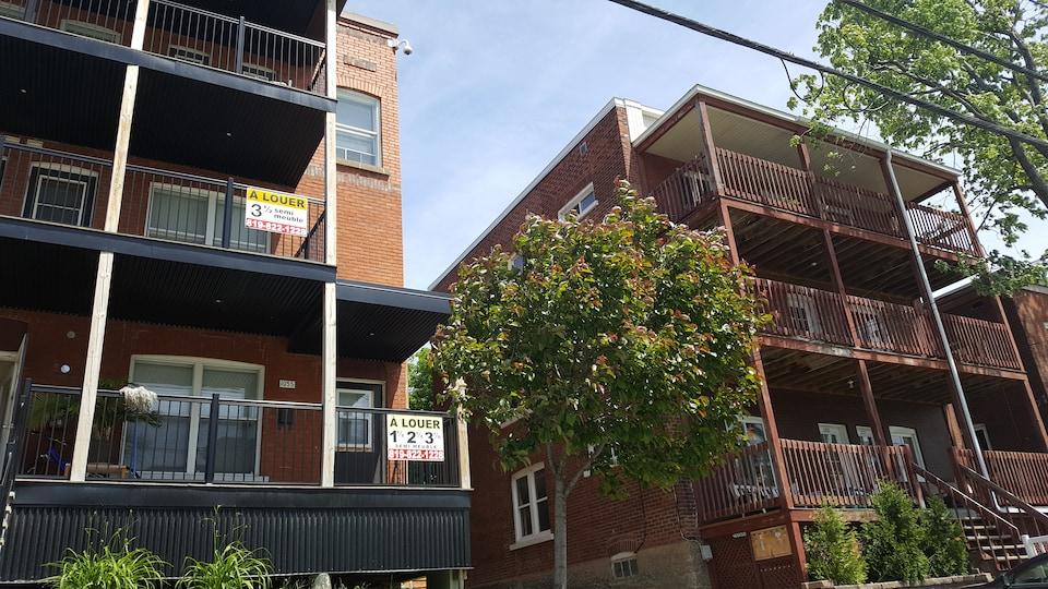 Deux blocs appartements. On voit une affiche indiquant des 11/2 21/2 et 31/2 à louer.