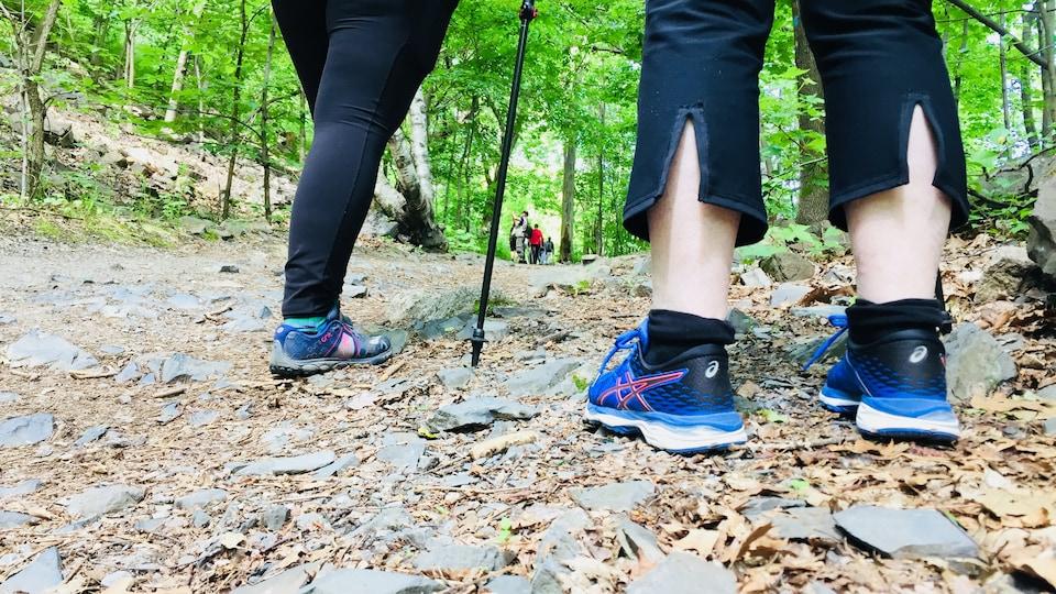Des jambes de marcheurs en forêt.