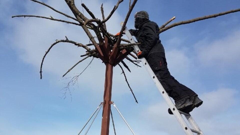 Un homme sur une échelle est en train d'installer un perchoir expérimental sur le toit d'un entrepôt du port de Victoria