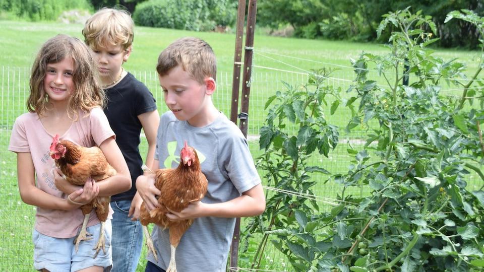 Trois enfants tenant des poules marchent dans un champ.