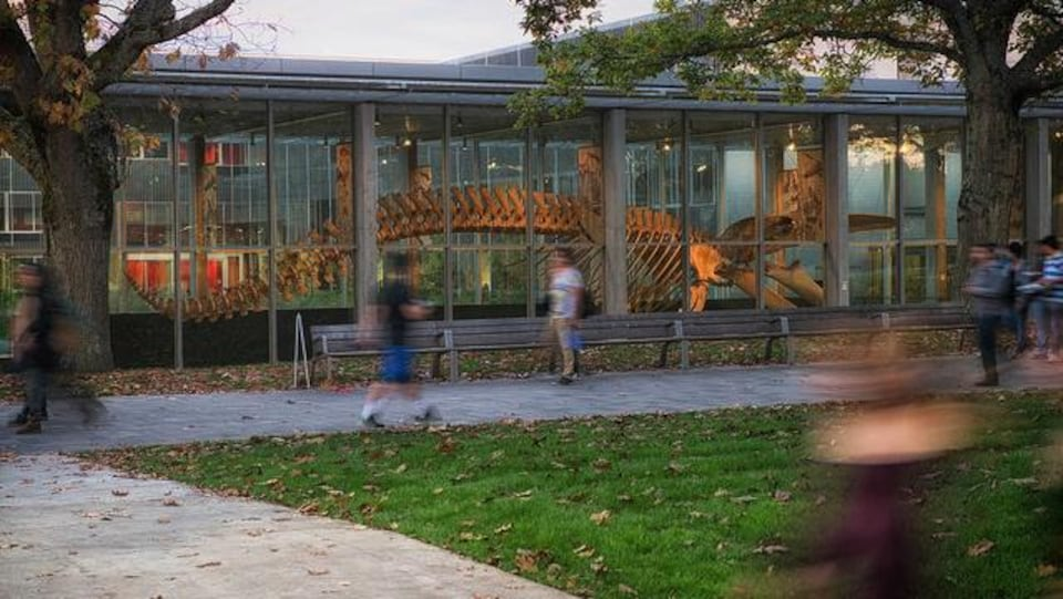 Le Musée de la biodiversité Beaty.