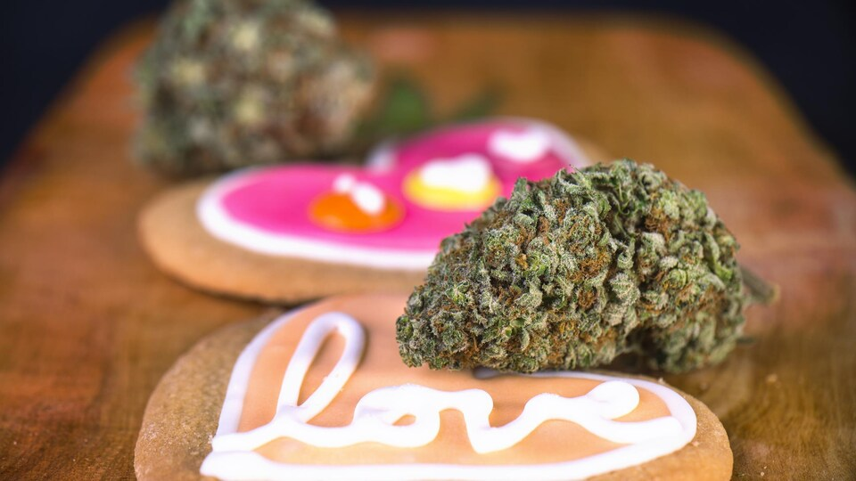 Des biscuits avec des inscriptions de messages d'amour déposés à côté de fleurs de cannabis.