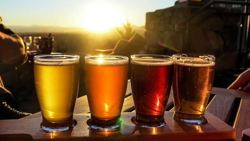 Quatre verres de bière en palette de dégustation sur fond de coucher de soleil.