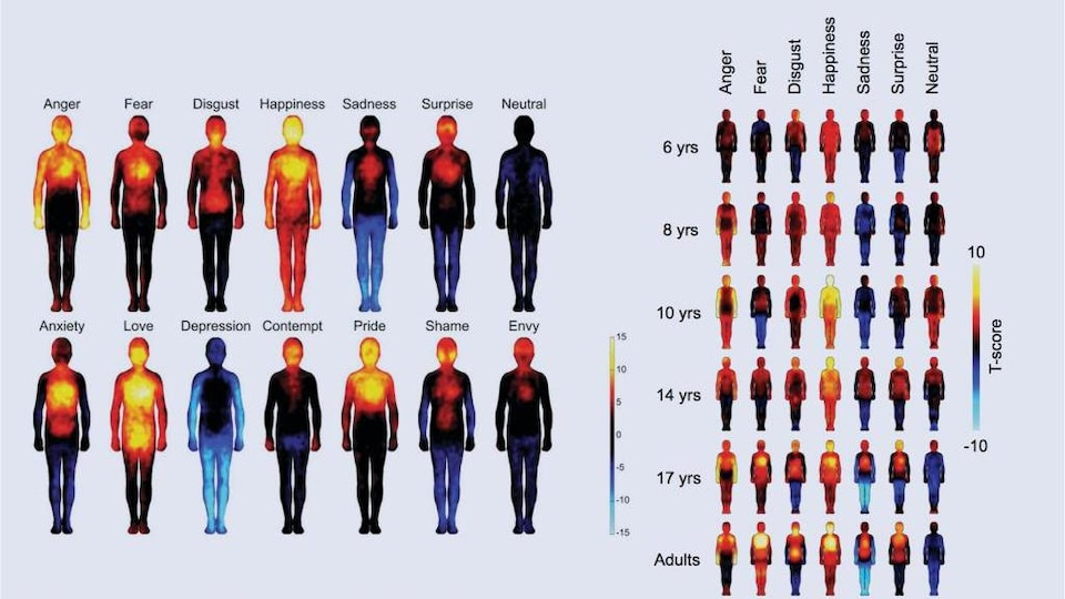 Illustration de dizaines de silhouettes humaines qui représentent les régions activées dans notre corps par certaines émotions.