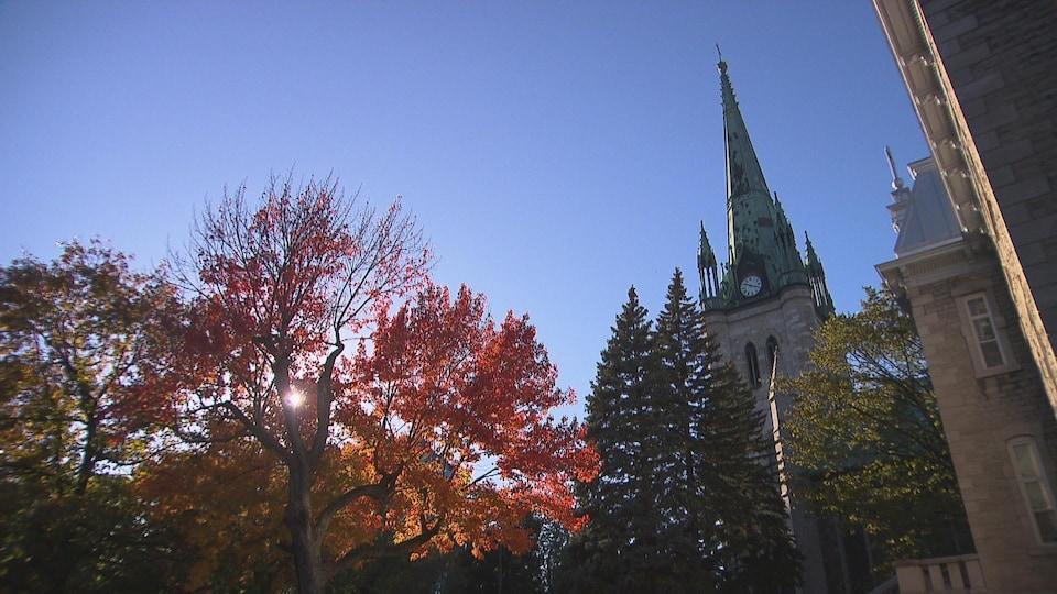 Le clocher d'une cathédrale qui pointe vers un ciel ensoleillé.