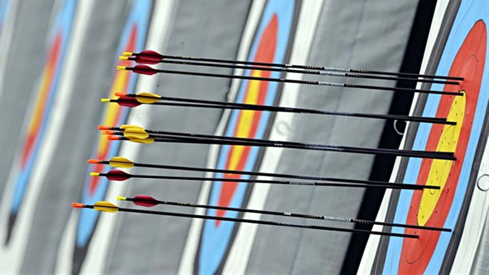 Des flèches dans une cible
