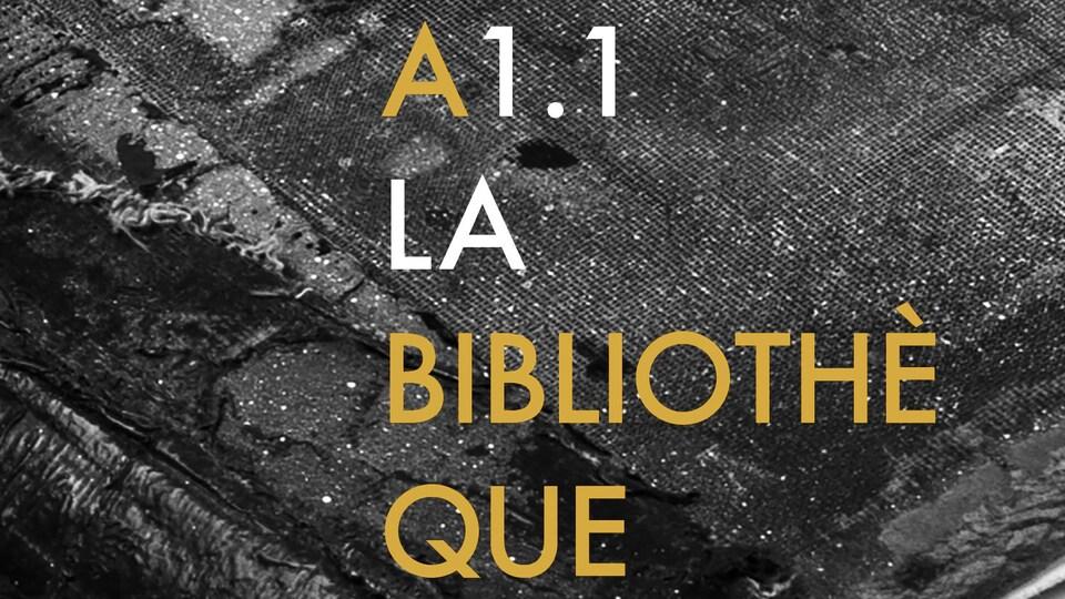 A1.1 La bibliothèque de Réjean Ducharme, publié aux Éditions Nota Bene