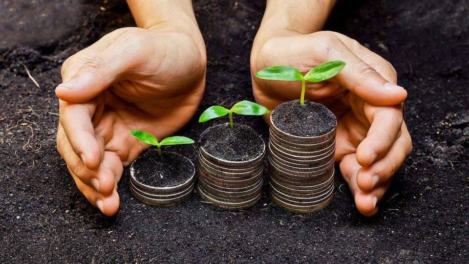 Des mains entourent des plies de monnaies sur lesquelles poussent de petits arbres.