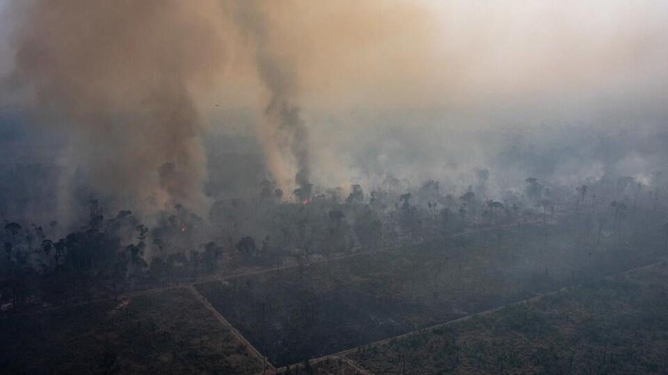 Vue aérienne d'une section en feu de la forêt amazonienne