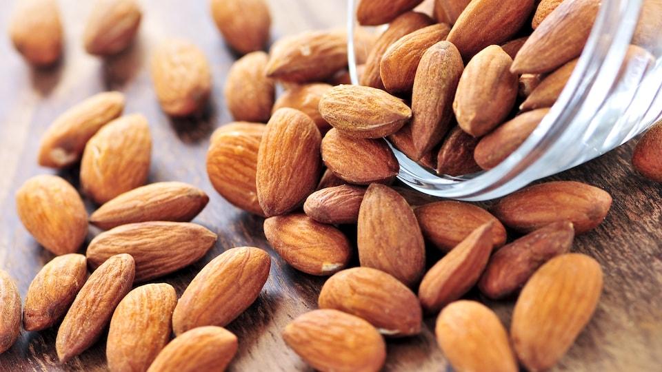 Les amandes favoriseraient l'élimination du mauvais cholestérol ...