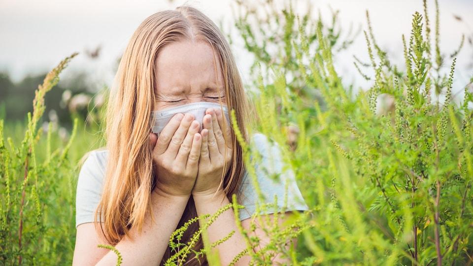 De nombreux Québécois souffrent d'allergies liées à l'herbe à poux.
