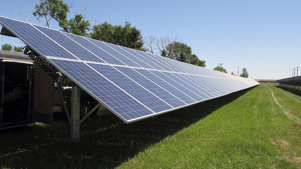 Une rangée de panneaux solaires dans un champ ensoleillé.