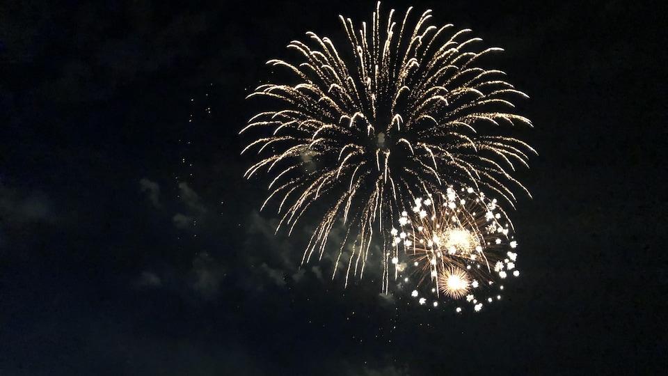 Des feux d'artifice dans un ciel noir.