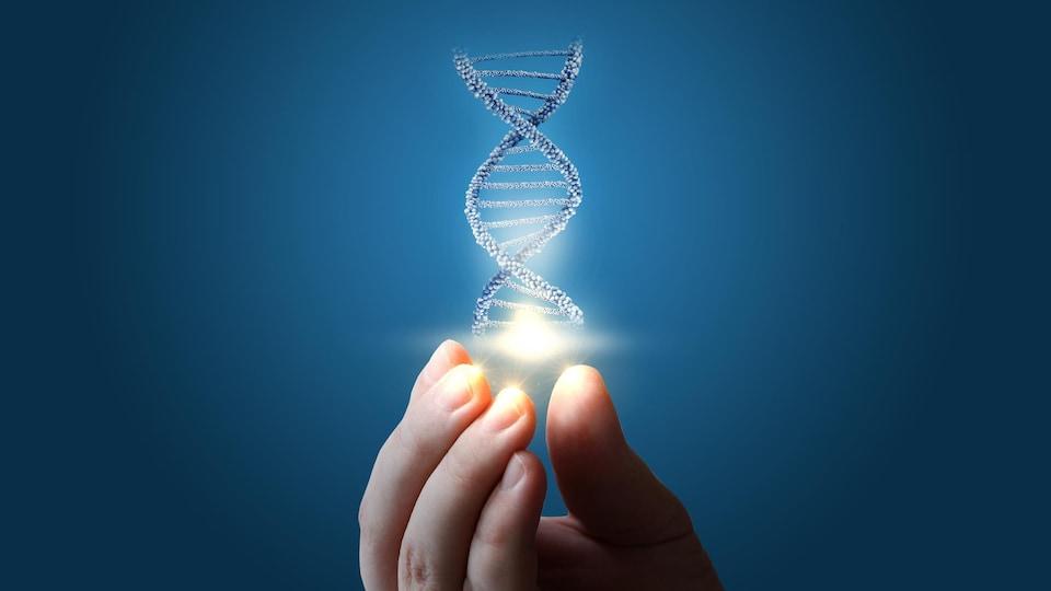 Illustration de l'ADN au bout des doigts.
