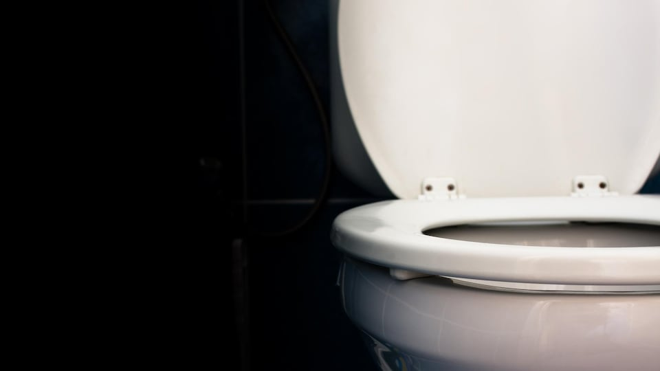 La cuvette d'une toilette  dont le couvercle est levé