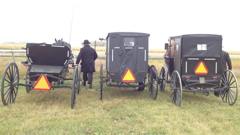 Des mennonites manipulent trois charrettes en bordure d'une route.