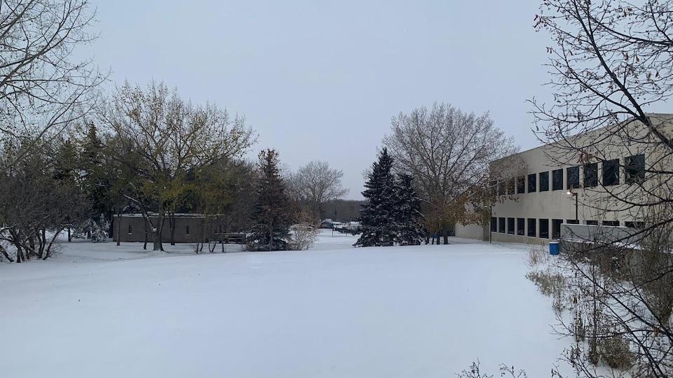 Un terrain recouvert de neige sous un ciel couvert.